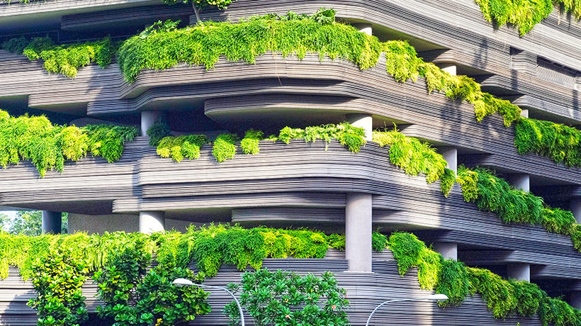 Biophilic Design – What you need to know - read more